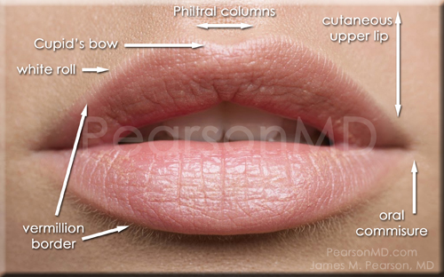 Pearson Lip Enhancement Diagram